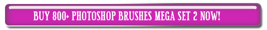 Buy 800  Photoshop Brushes MEGA SET 2 Now