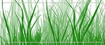 Grass, Photoshop brush