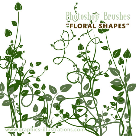 New Photoshop Brushes   Floral Shapes