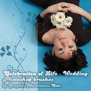 Celebration of Life – Wedding Photoshop brushes