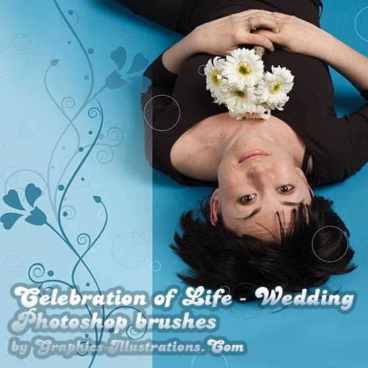 Celebration of Life - Wedding Photoshop brushes