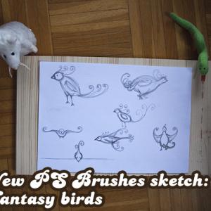 New PS Brushes sketch: Fantasy birds