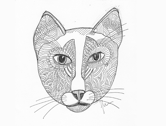 Cat No. 1