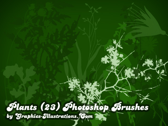 Free download: Photoshop plants brushes
