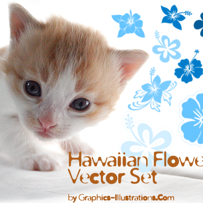 Hawaiian Flowers Vector Set (35)