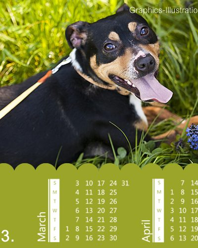 2013 Calendar Photoshop brushes set (3x12 - 36, US version) + 36 PNGs