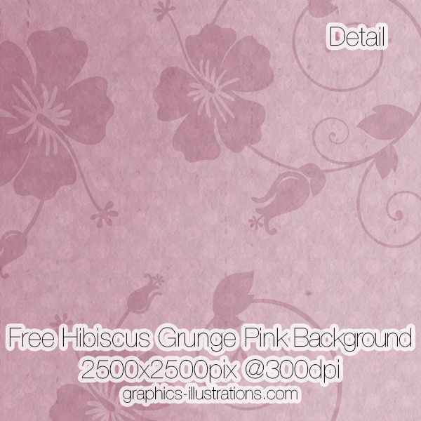 Free Hibiscus Grunge Pink Background