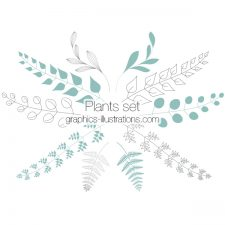 Plants Clip Art, Photoshop brushes , Transparent PNG files and vector files (EPS), Floral Design Elements, Plants Design Elements