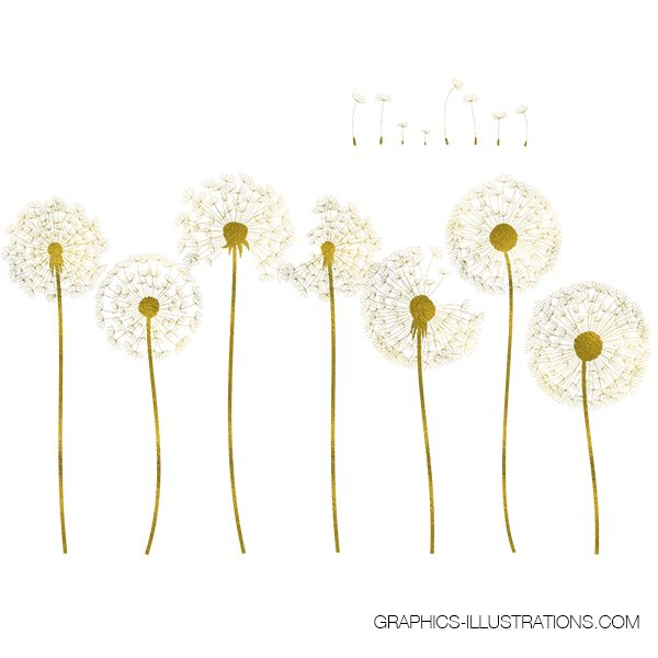 Gold, Rose Gold and Silver Foil Dandelion Clip Art