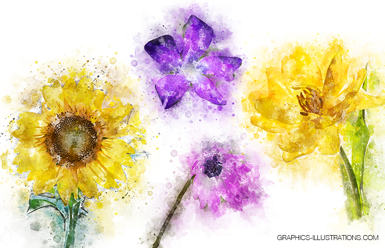 Watercolor Flowers (digital watercolor)