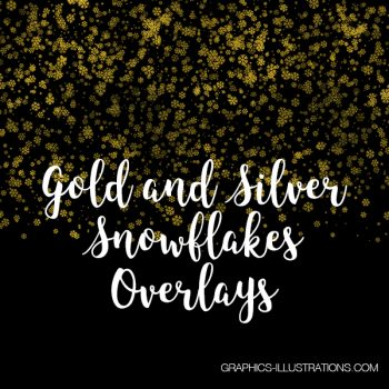 Gold and Silver Snowflakes Overlays
